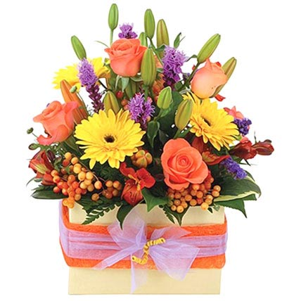 Vibrant Boxed Arrangement