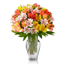 Alstroemeria Bouquet: Anniversary Flowers to Australia