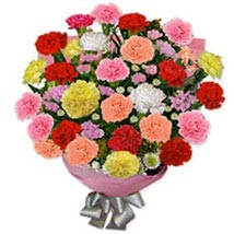 Carnation Carnival bulg: Send Gifts to Bulgaria