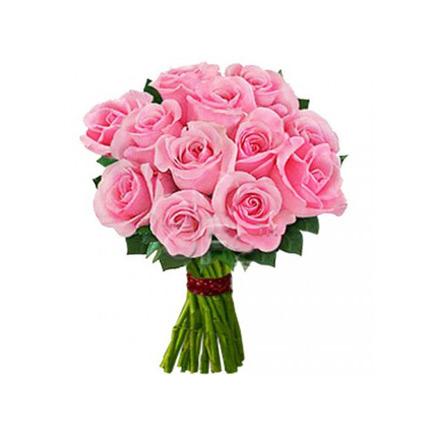 12 Beautiful Pink Roses
