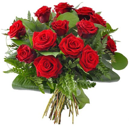 12 Beautiful Red Roses