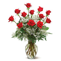 A Dozen Deluxe Roses: Send Gifts to Mississauga