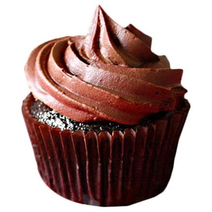 Chocolate Cupcakes 24