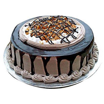 Chocolate Nova Cake 2kg
