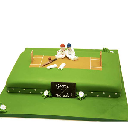 Heavenly Delights Cricket Cake 4kg Eggless