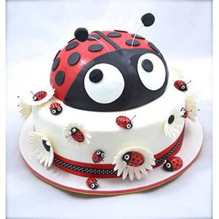 Lady Bird Cake 2kg