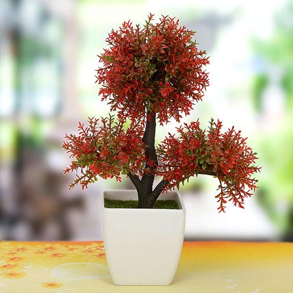 Little Red Plant