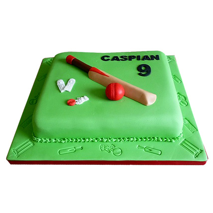 Mad About Cricket Cake 2kg Eggless