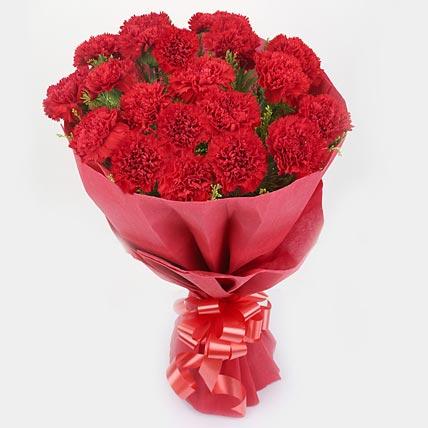 Red Blossom Carnations