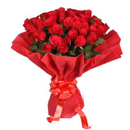 Romantic 40 Rose