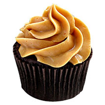 Special Chocolate Cupcakes Delight 24 Eggless