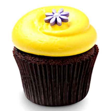 Sunshine Chocolate Cupcakes 12 Eggless