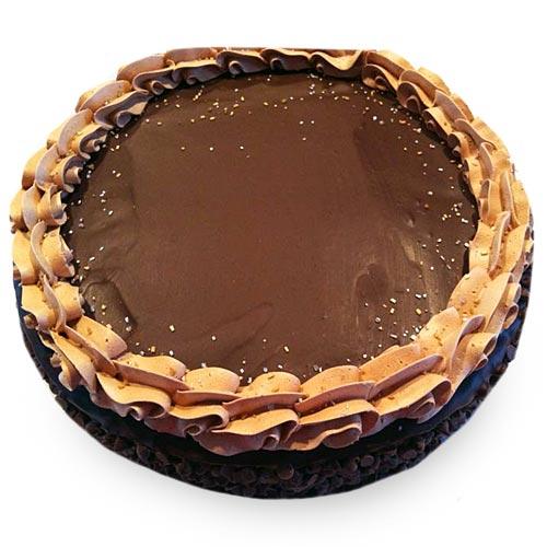 Tempting Chocolicious Cake 3kg