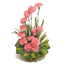 Bright Blush Basket Arrangement Of 15 Pink Carnations