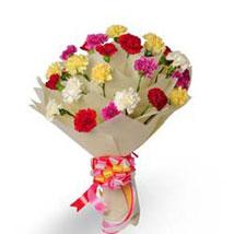 Bright Fervor EXDFNP33: Send Holi Gifts to Gurgaon