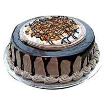Chocolate Nova Cake:  Cake Delivery in Delhi