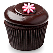Chocolate Squared Cupcakes: Send Cup Cakes to Pune