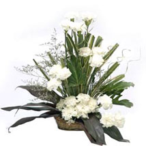 Cool Classic: Flowers for Sympathy & Funeral