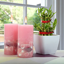 Lucky Bamboo With Scented Candles: Lucky Bamboo