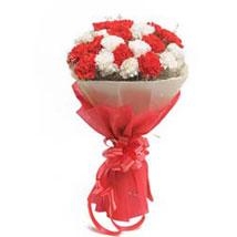 Red N White Carnations: Designer Bouquet