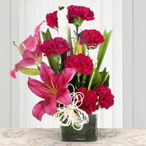 Serene Carnation: Valentines Day Special Lilies