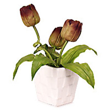Terrfic Tulip Today and Always: Easter Gifts