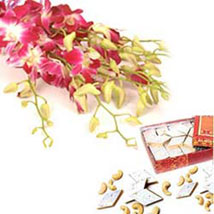Warm N Best Wishes: Send Flowers & Sweets to Jaipur