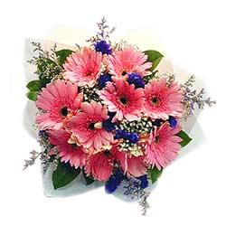 10 Pink Gerberas Bouquet MAL