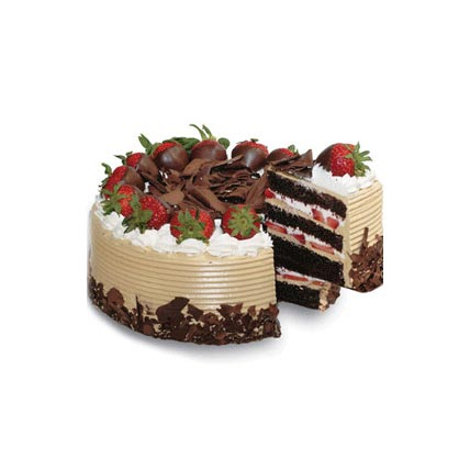 Choco and Strawberry Gateaux