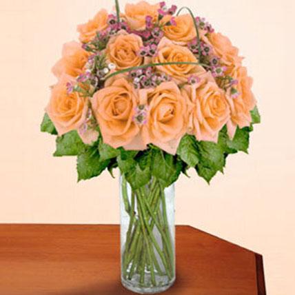 12 Long Stem Peach Roses