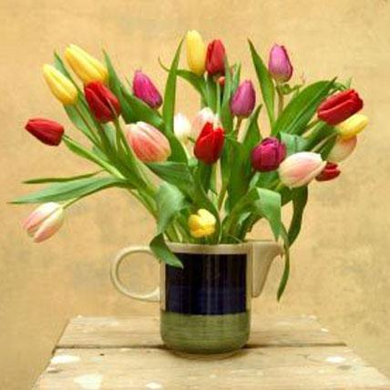 30 Assorted Tulips